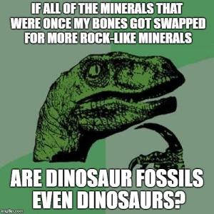 philosoraptor-fossil